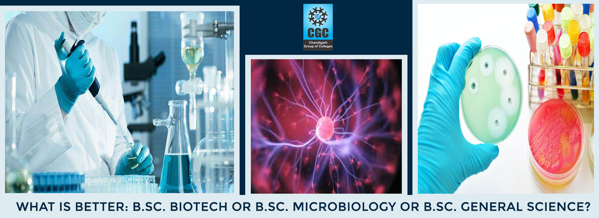 Which is better: B.Sc. Biotech / B.Sc. Microbiology or B.Sc. General Science?