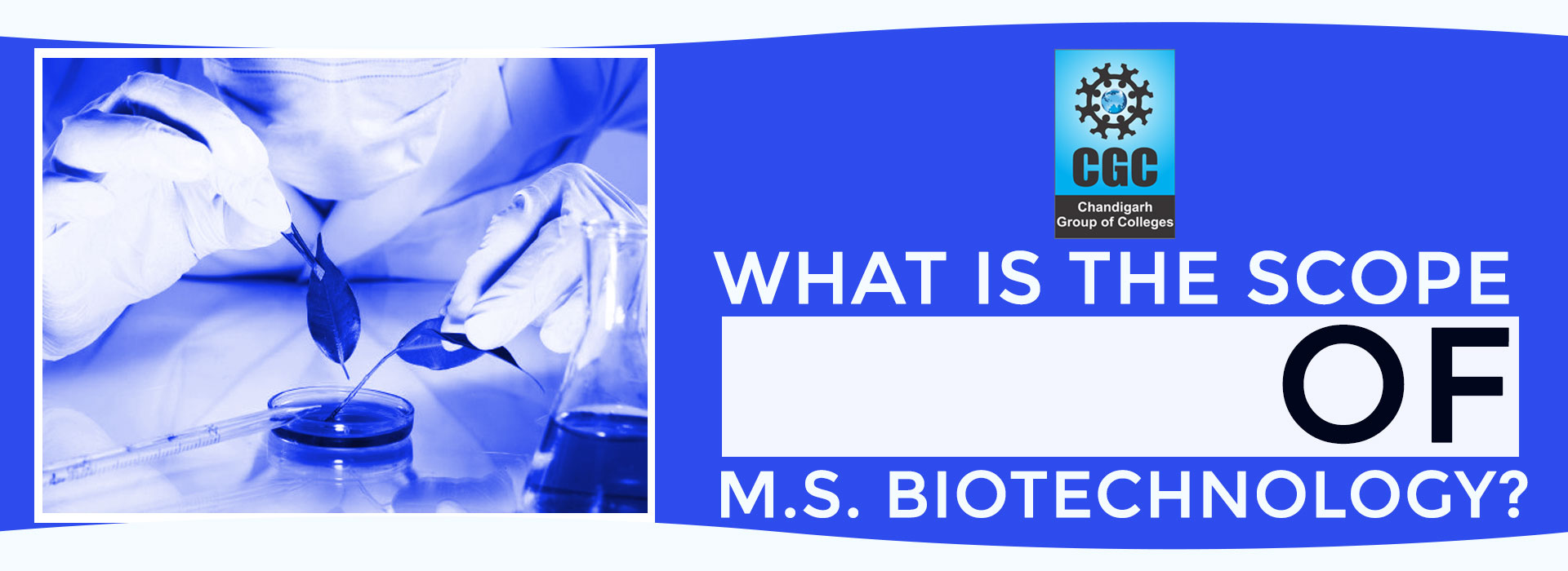 What is the scope of M.Sc. Biotechnology?